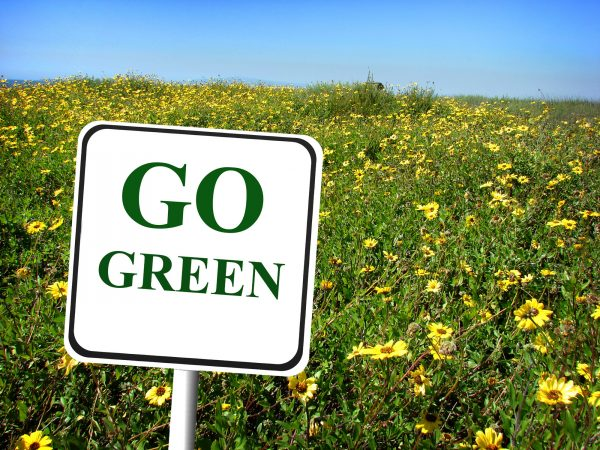 Have Consumers Forced Big Business to Go Green?