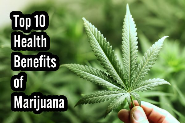 Tips Growing Marijuana Indoors Outdoors – Know Them