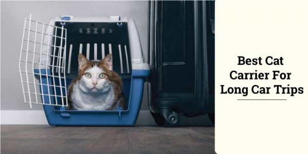 Best Cat Carriers For Long Car Trips